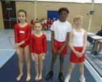Gymnastics (4)